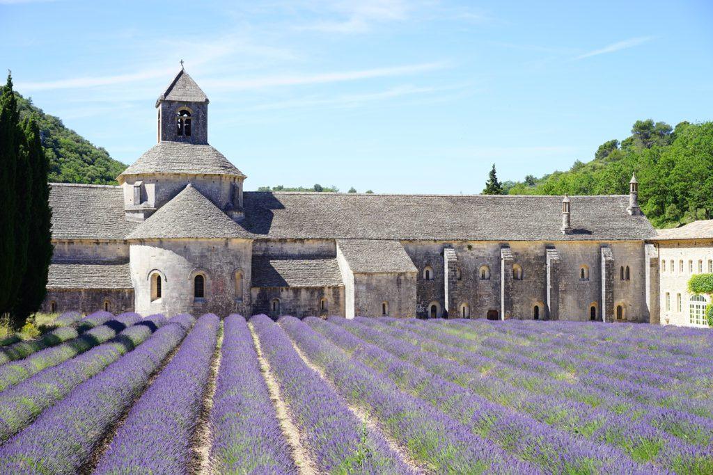 Abbaye de Sénanque, champ de lavande à côté d'Avignon.