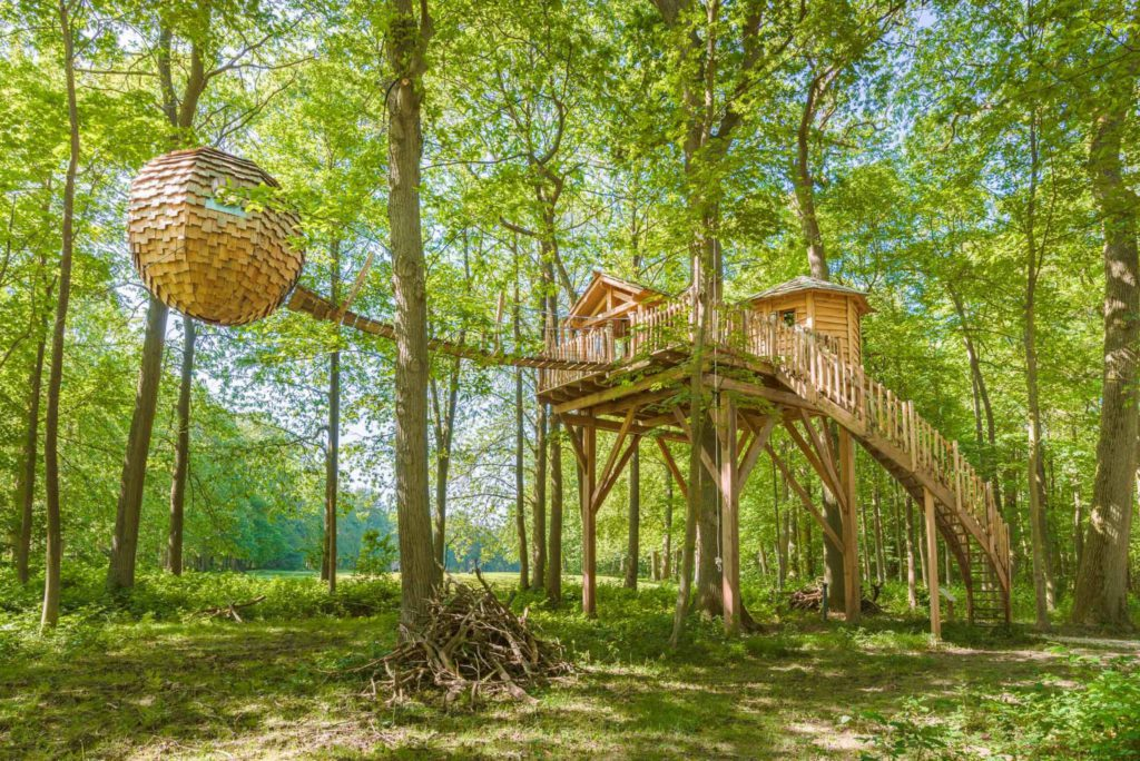 Dormir dans une cabane dans les arbres pour célébrer un anniversaire insolite