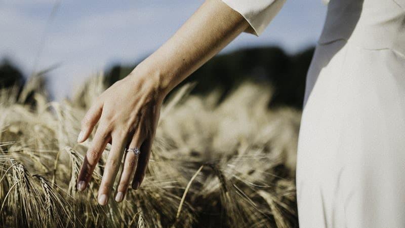 Comment remercier ses invités par carte postale après son mariage ? Main dans champ de blé avec bague de mariée