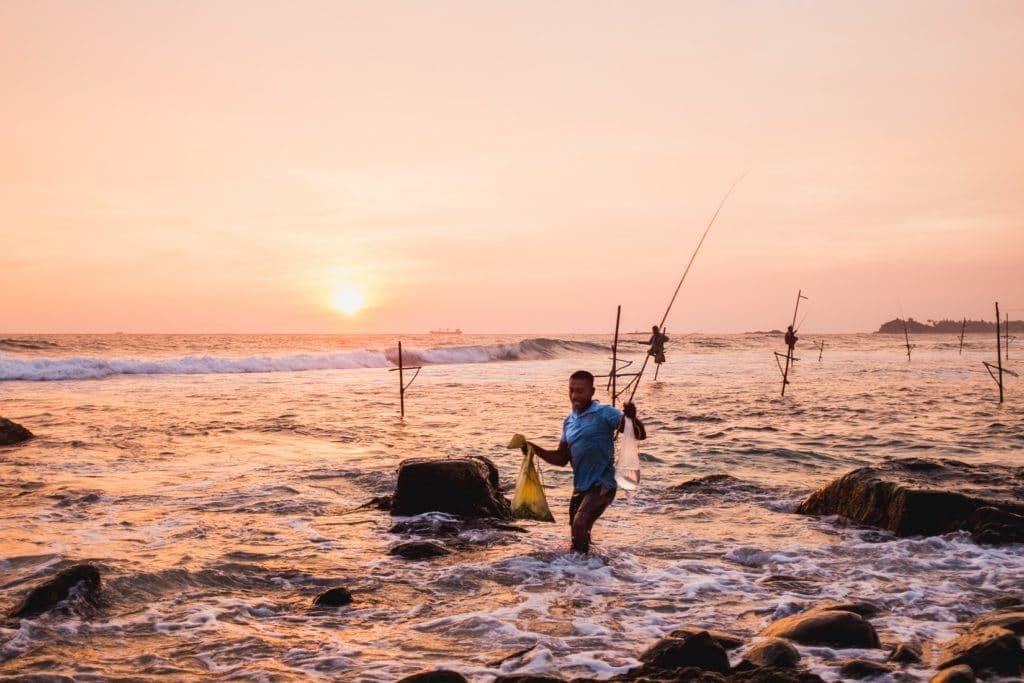 Pêcheurs traditionnels sur échasse au Sri Lanka