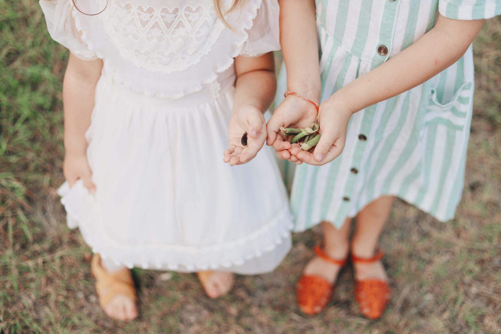 mains d'enfants portant des fleurs sechees pour herbier