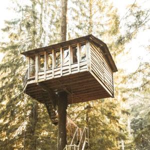 Cabanes dans les arbres activite insolite a faire en France