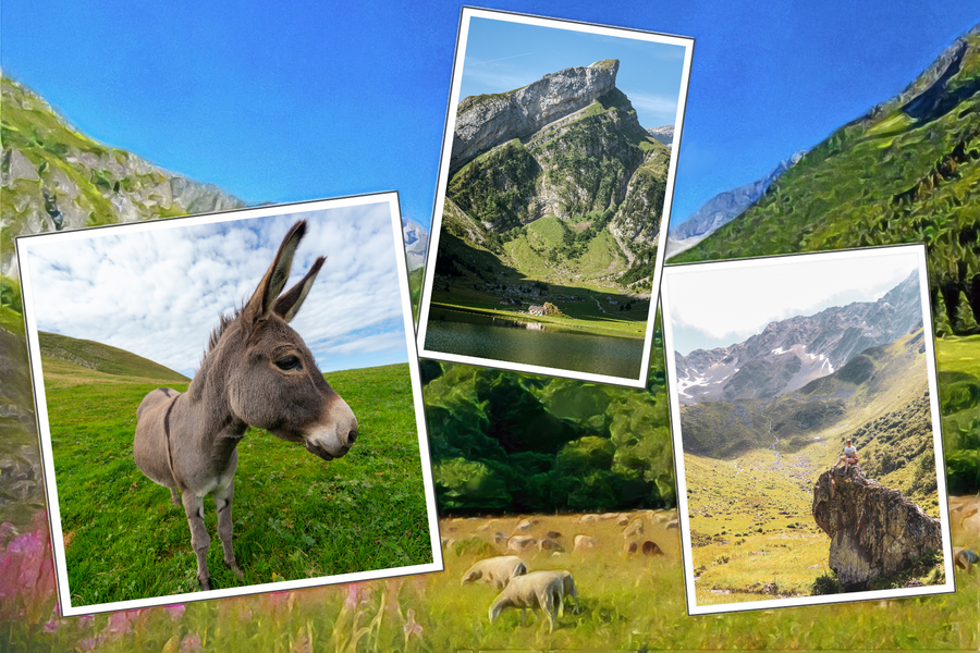 Carte postale alpes ane