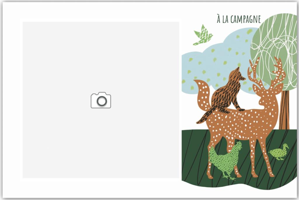 Chevreuil et renard à la campagne