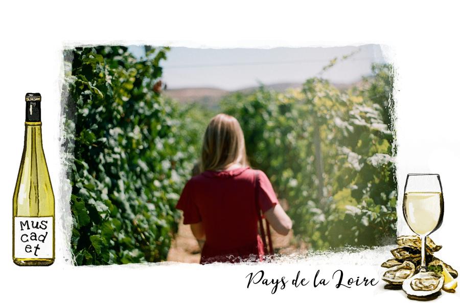 Carte postale des Pays de la Loire avec vin blanc