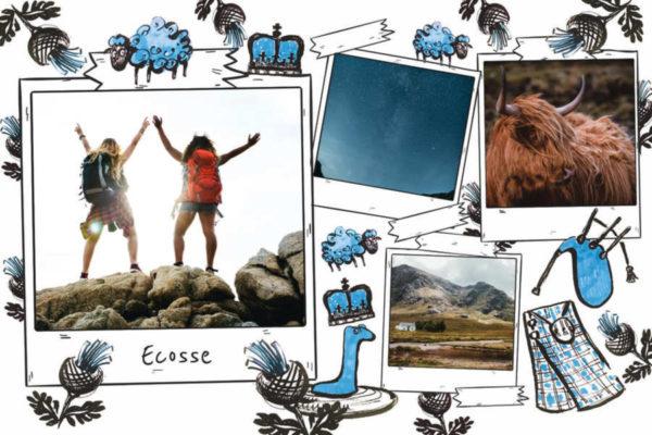 carte-postale-ecosse-moutons