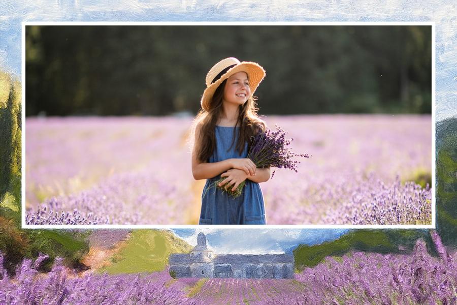 Carte postale des Champs de lavande en Provence
