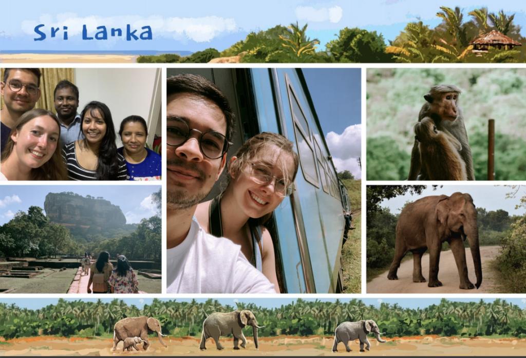 Carte postale du Sri Lanka avec éléphants