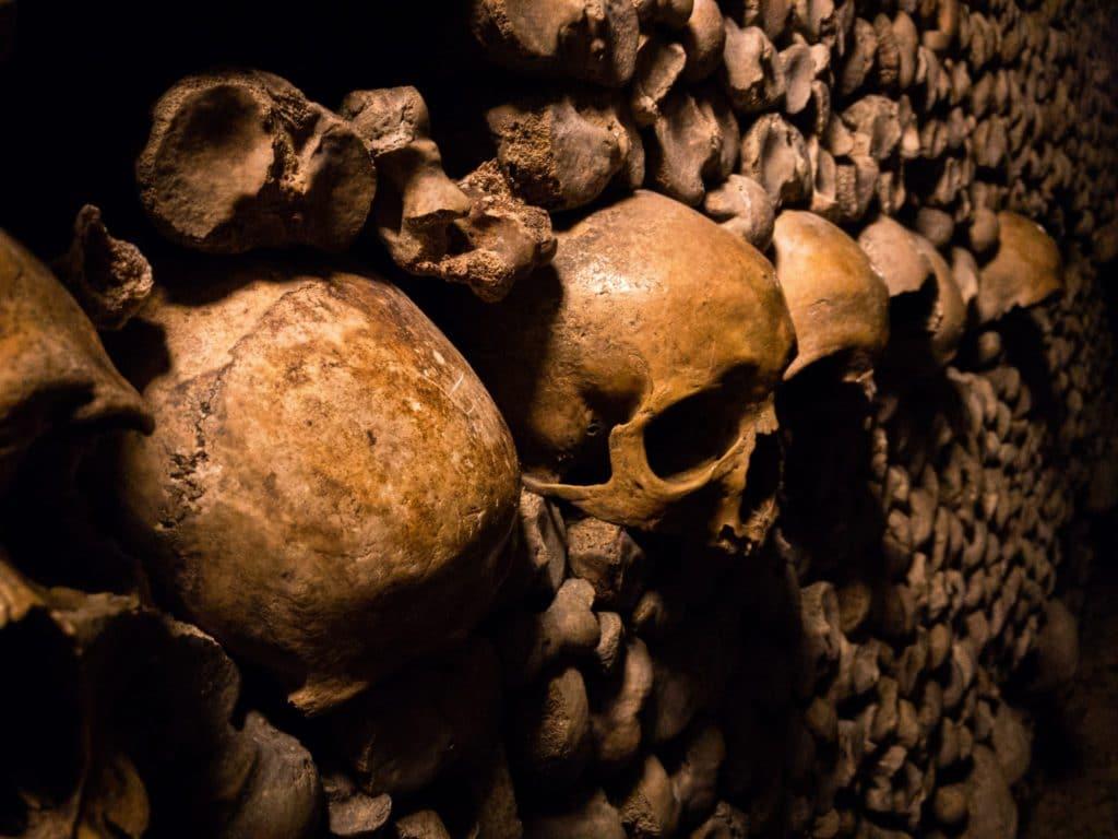 Crânes des Catacombes de Paris