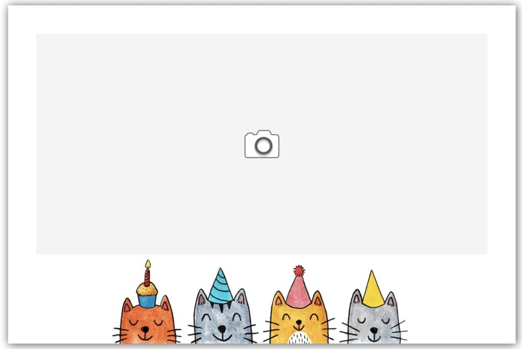 Quatro de chats