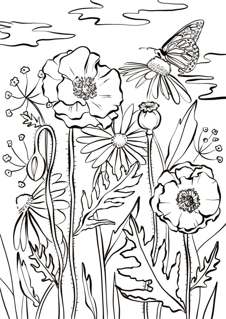 coloriage fleurs et papillons printemps pour adulte