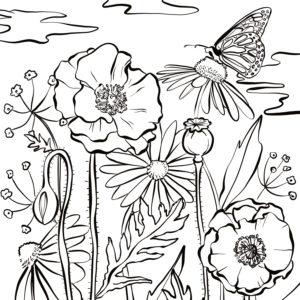 coloriage carre adultes fleurs
