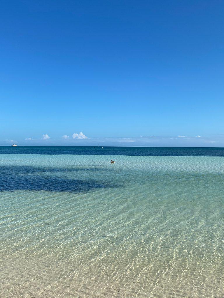 Eau turquoise dans les Keys a Miami Floride