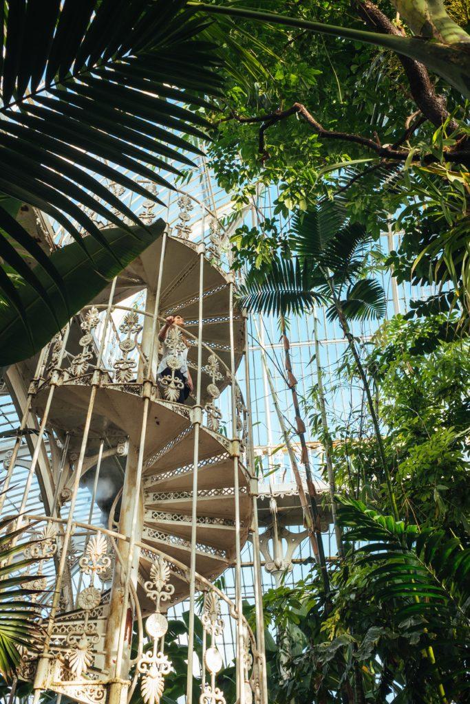 escaliers serre de Kew Gardens a Londres