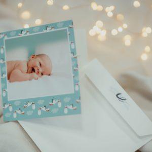 Faire-part de naissance personnalise avec photos bleu avec cigognes Fizzer