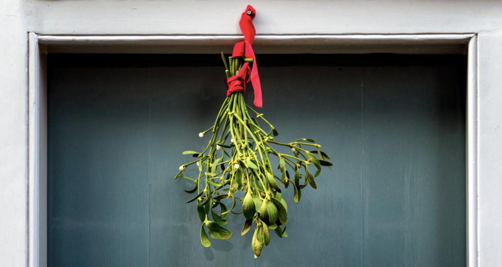 Branche de gui sur porte d'entree