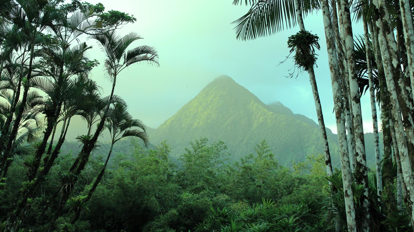 Guide vacances en Martinique