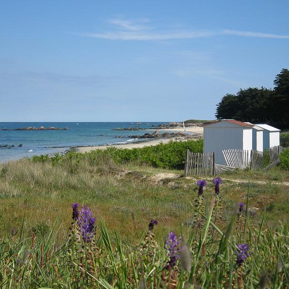 ile d'yeu avec maison plage et fleurs