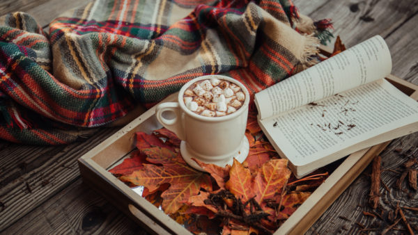 chocolat chaud, plaid, livre pour soiree cocooning reussie
