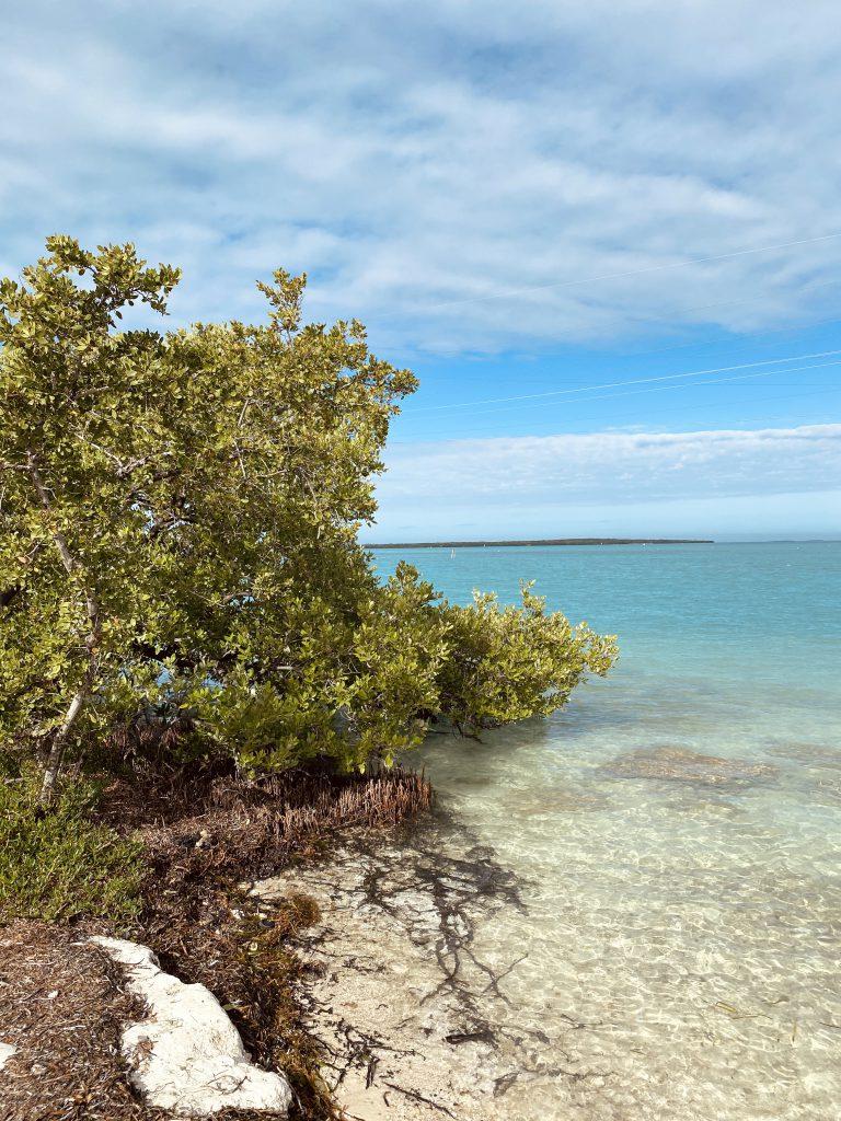 Plage dans les Keys a Miami Etats-Unis