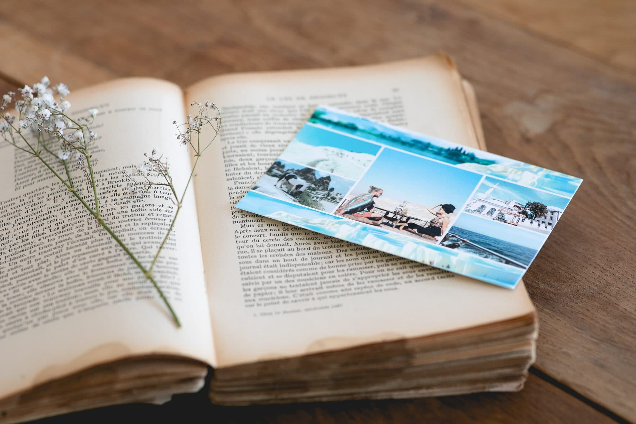 Livre et carte postale Fizzer