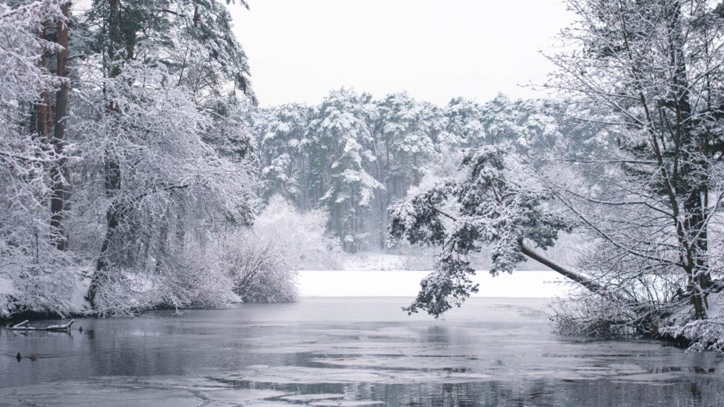 Paysage neige Moscou
