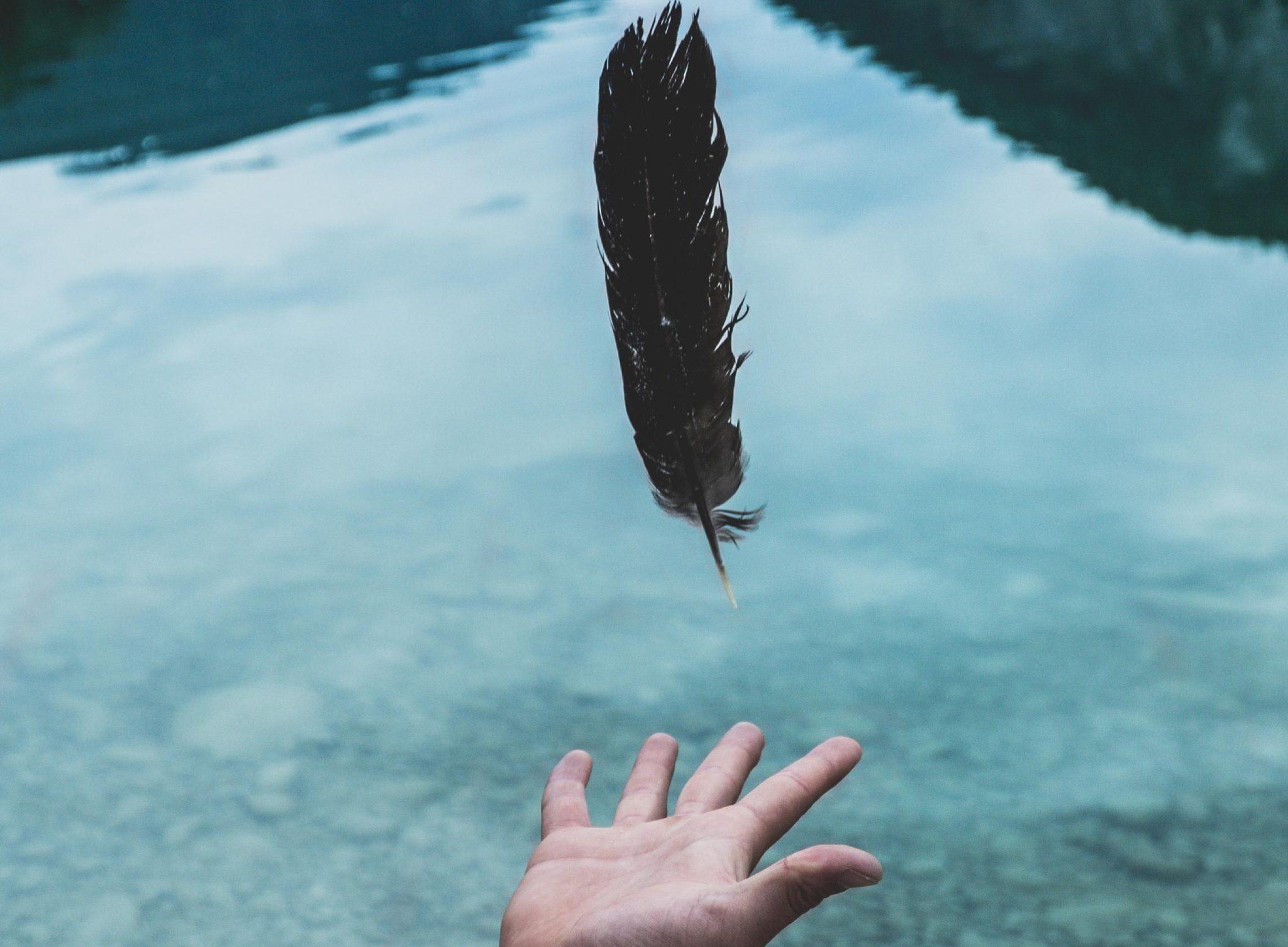 main lachant une plume sur un lac