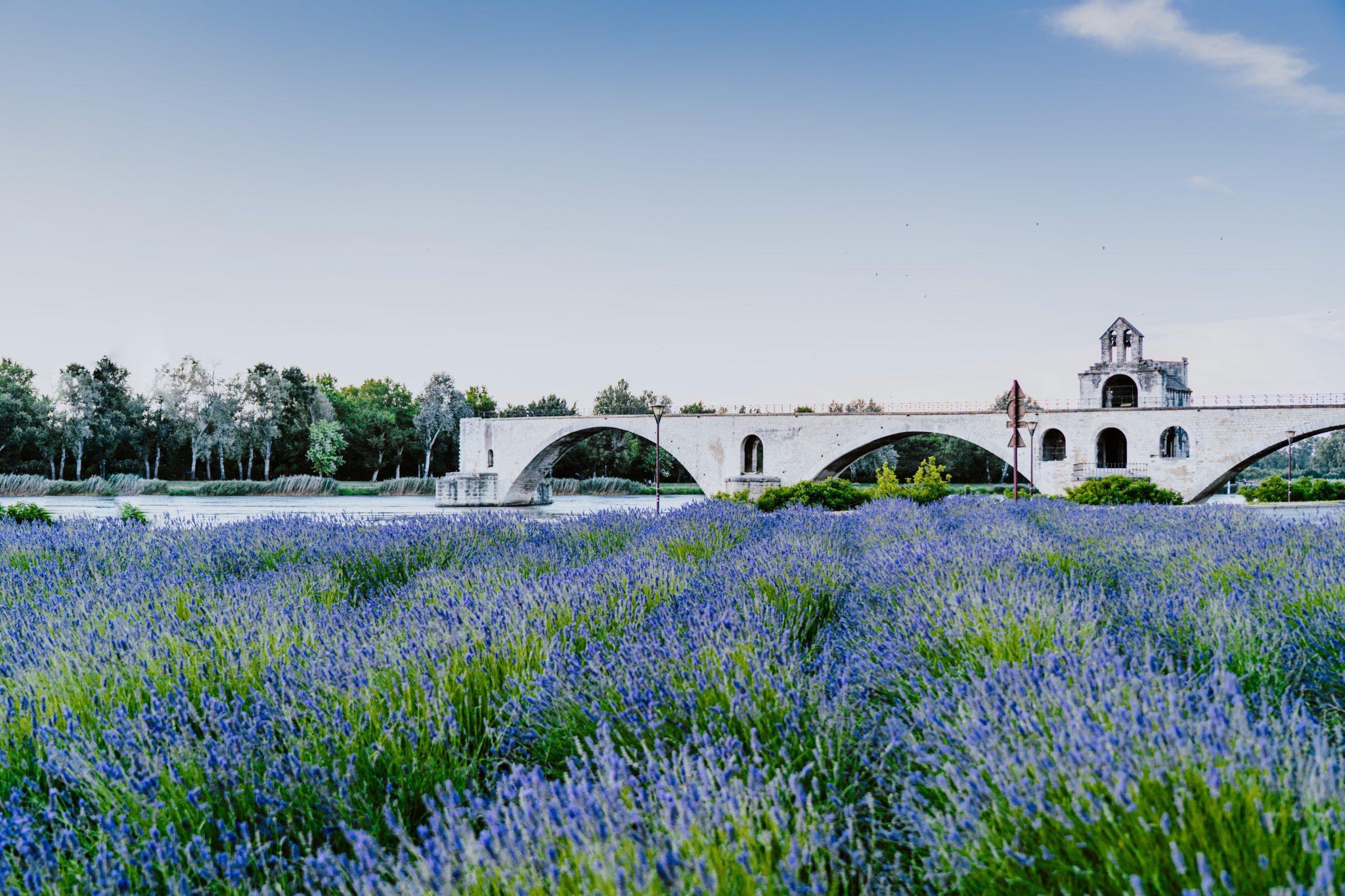 pont avignon week-end en France